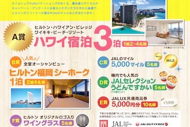 ヒルトンハワイ宿泊をあてようキャンペーン アンケートに答えてハワイへ!│ハワイのタイムシェア・コンシェルジュ JALバケーションズ