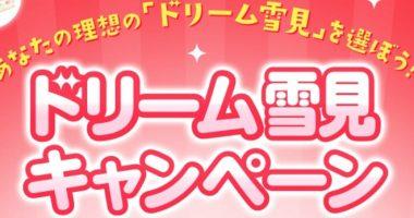 Wチャンスもアリ☆LOTTE「ドリーム雪見キャンペーン」