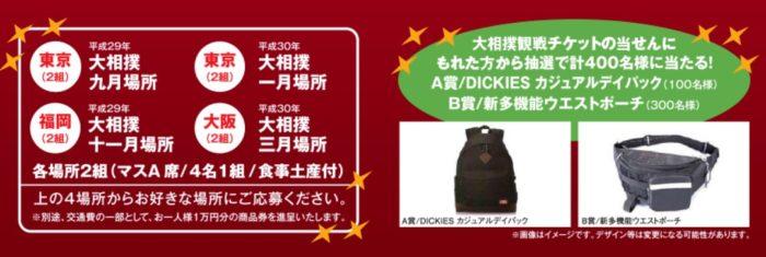Wチャンスもアリ☆北興化学工業「カチボシ 大相撲ご招待キャンペーン」