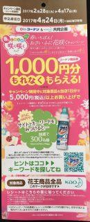 コーナン & 花王 共同企画「春いちばん!おさいふに花咲くキャンペーン