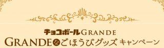 シェラトン・グランデペア宿泊券も当たる!森永製菓「GRANDEなごほうびグッズプレゼントキャンペーン」