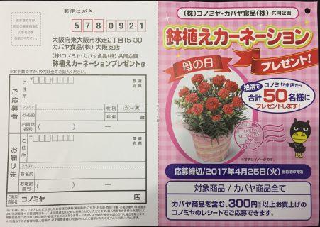 コノミヤ・カバヤ食品 共同企画「鉢植えカーネーションプレゼント