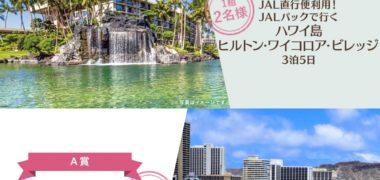 JALバケーションズの「Big Island キャンペーン
