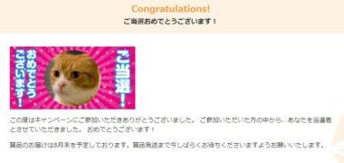 KADOKAWAのキャンペーンで「WebMoney 1,000円分」が当選