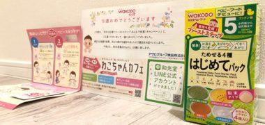 和光堂のTwitter懸賞で「ベビーフード ためせる4種はじめてパック」が当選
