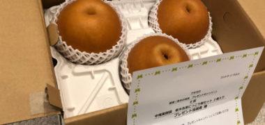 アキモのハガキ懸賞で「栃木名産にっこり梨セット」が当選