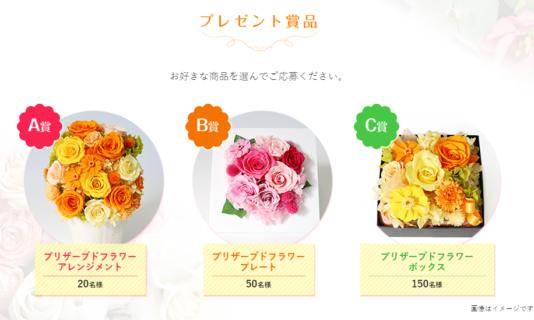 ビオフェルミン製薬の「笑顔の花咲く!フローラキャンペーン