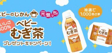アサヒ飲料の「おいしさ100% ベビーむぎ茶プレゼントキャンペーン