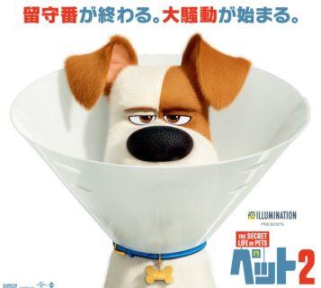 イオンシネマの「全国試写会ペアでご招待!」キャンペーン