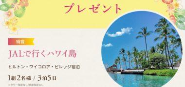 株式会社JALUX JALバケーションズの「ハワイ島旅行プレゼントキャンペーン