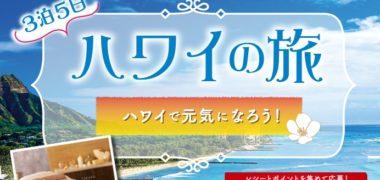 Eisaiの「3泊5日ハワイの旅プレゼントキャンペーン