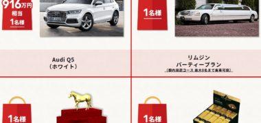 日本中央競馬会の「JRAアニバーサリー福袋プレゼントキャンペーン