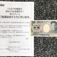 ニッスイのキャンペーンで「現金 1,000円」が当選