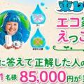 8.2-東レミちゃんのエコ家事でえっこら賞キャンペーン