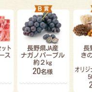 長野県産きのこキャンペーン|まるっとおいしく! 信州JA全農長野×ChefooDo