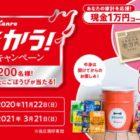 現金 1万円 / たたかう!のど飴缶