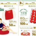 Yogiboや大粒いちごが当たるレシートキャンペーン♪