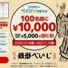 現金10,000円 / 5,000円