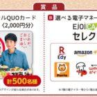 向井理QUOカード2,000円分 / 電子マネーギフト2,000円分