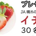 JA晴れの国岡山のイチゴが当たる写真投稿キャンペーン☆