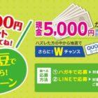 現金5,000円 / QUOカード500円