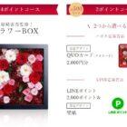 假屋崎省吾監修フラワーBOX / QUOカード2,000円分 他