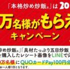 ニチレイフーズ 本格炒め炒飯®は20周年!先着20万名様がもらえる!キャンペーン