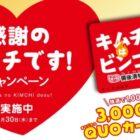 QUOカード3,000円分