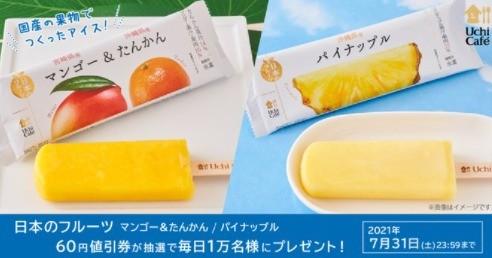 日本のフルーツ 60円値引券が抽選で毎日1万名様にプレゼント!