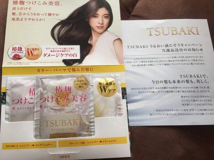 資生堂 SHISEIDO TSUBAKI