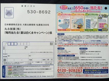 丸永製菓「毎月当たる!夏は白くまキャンペーン